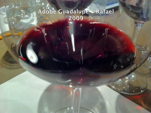 Adobeguadalupe-rafael-2009